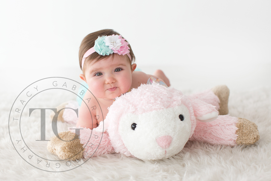 Tampa baby photographer tracy gabbard photography